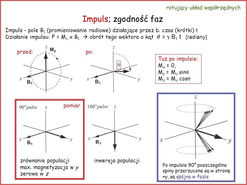 Impuls; zgodność faz  = g B1 t [radiany] rotujący układ współrzędnych